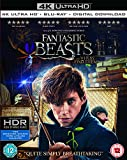 Fantastic Beasts and Where To Find Them [4k Ultra HD + Blu-ray + Digital Download] [2016]