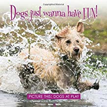 Dogs just wanna have FUN! - Picture this: Dogs at Play