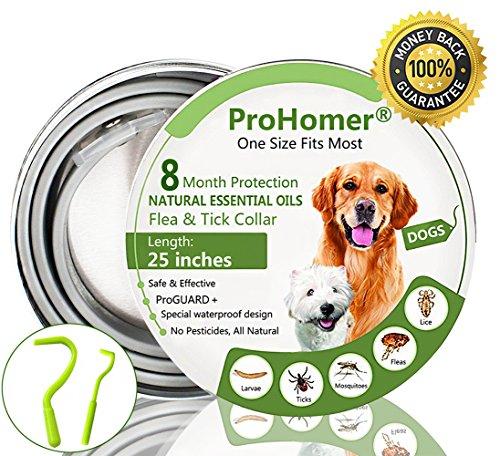 Prohomer® collare per pulci per cani & gatto, uccidere zecche e pulce in modo efficace, impermeabile, ajustable collare antiparassitario. perfetto per cani e gatti di taglia piccola, media e grande | colore: grigio | lunghezza: 63 cm