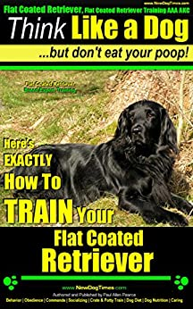 Flat Coated Retriever, Flat Coated Retriever Training AAA AKC | Think Like a Dog But Don't Eat Your Poop! | Flat Coated Retriever Breed Expert Training: Here's How To TRAIN Your Flat Coated Retriever by [Pearce Flat Coated Retriever PuppyTraining, Paul Allen]