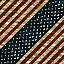 Bandana Tejido pañuelo Biker Flag Us Bandera de Estados Unidos