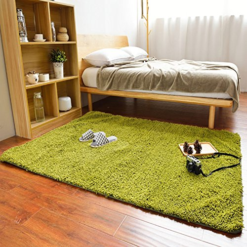 Shag Green Rug Rug (Ländern zu Japan Superfine Faser Chenille Farbe Teppich Teppich Shag Bodenschutzmatte–maxyoyo Ultra Weiche Groß Bereich Teppich für Wohnzimmer/Schlafzimmer/Esszimmer 31,5von 190,5cm, Polyester-Mischgewebe, lichtgrün, 75 by 75 Inch)