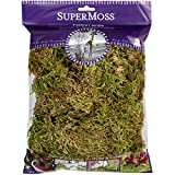 #9: Supermoss 21576 Forest Moss Dried 4oz