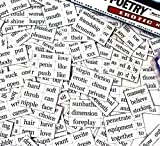 Erotic Poetry Fridge Magnet Set