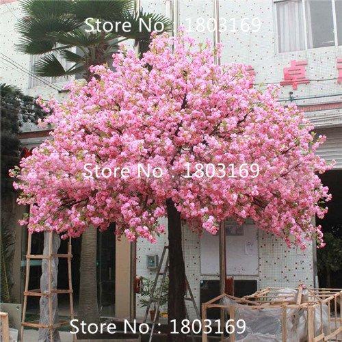 10-pezzi-fontana-pianto-di-ciliegio-giardino-domestico-di-diy-albero-nano-ornamentali-piante-semi-di