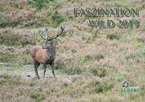 Jagdkalender - Faszination Wild 2019 (Faszination Bad)