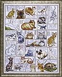 Design Works - Juego de punto de cruz, diseño de abecedario con gatos