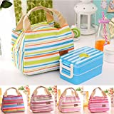 Best GENERIC Insulated Lunch Bags - Generic E : Cute Fashion Insulated Thermal Cooler Review
