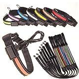 Energy Super Bright Solar USB-wiederaufladbarer LED-Hundehalsband Mit Hervorragender Sichtbarkeit - In 7 Farben Und 3 Größen Erhältlich