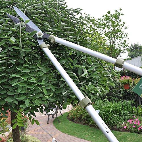 Worth Garden 29in. -42in. L Teleskop-Heckenschere, hochwertiger Profi RAZORSHARP Hand neigen, ausziehbar Clipper, langer Griff Zaun Cutter w/Wave Klinge