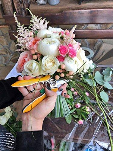 gruentek-rosen-pflanzenschere-colibri-170-mm-edelstahlklingen-mit-zink-legierung-blumenschere-mit-soft-touch-ergo-griff-gartenschere-rosenschere-trimmerschere-bypass-3