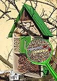 Großes Insektenhotel No-1 aus Holz Insektenhaus XXL Nistkasten grün hellgrün Insektenhotel groß 50 cm mit Lotus-Effekt Oberflächen Beschichtung und 2 Sichtgläsern 8 und 11 mm Beobachtungsröhrchen komplett mit Füllmaterial, iInsektenhäuschen - biologischer ökologischer natürlicher Pflanzenschutz - ökologische biologische natürliche Blattlausbekämpfung - Insektenhotel zum Hängen und zum Aufstellen - Tolle Farbwahl - Marienkäferhaus Schmetterlinge Gartendeko