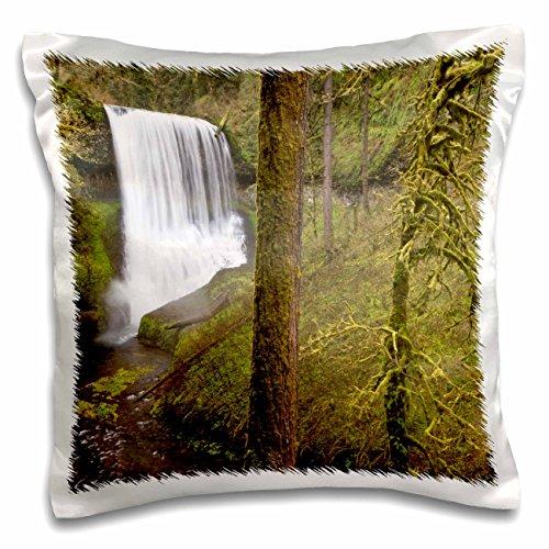 Danita Delimont - Waterfalls - Waterfalls, Silver Falls State Park, Oregon, USA - US38 WSU0143 - William Sutton - 16x16 inch Pillow Case (pc_146355_1)