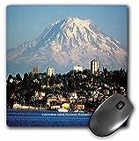 Best The   Tacomas - Sandy Mertens Washington State - Mount Rainier Behind Review