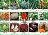 Gemüse Set 2: Broccoli Blumenkohl Gurken