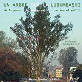 De la photo à la photographie: Un arbre sur la Lubumbashi