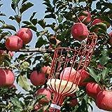 BESTONZON Obstpflücker mit leichter 175-400 cm langen Teleskopstange, verstellbarer Apfelpflücker...
