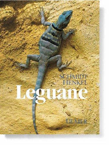 Leguane. Biologie, Haltung und Zucht