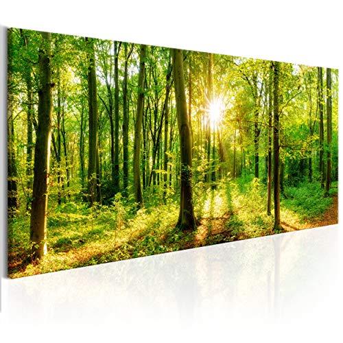 decomonkey Bilder Wald 150x50 cm XXL 1 Teilig Leinwandbilder Bild auf Leinwand Wandbild Kunstdruck Wanddeko Wand Wohnzimmer Wanddekoration Deko Baum Bäume Natur Landschaft