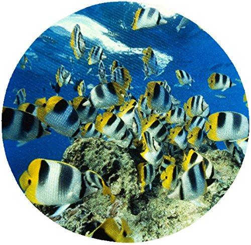 Rund Mauspad mit tropischen Fische: double-saddled Butterfly Fish # RMM44 (Butterfly Fisch)