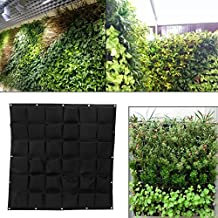 jardin vertical pared - Amazon Prime - Amazon.es