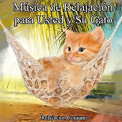 Música para Su Gato