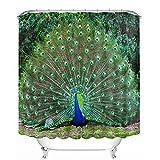 Beddingleer Duschvorhang Anti-Schimmel 180x180 cm Bunt Peacock Bad Duschvorhang textil Wasserdicht und Mildewproof aus 100% Polyester