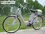 Vélo à Assistance Electrique 36V CITY BIKE GRIS METAL