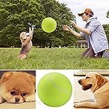 Groten Tennis Ball Kugel große riesige Hund Welpen Thrower Chucker Launcher Spielen Spielzeug C5 24CM