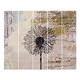 Bilderwelten Schiebegardinen Shabby Pusteblume Ohne Aufhängung 250x300cm 5 Flächenvorhänge