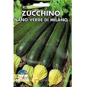 Vivai Le Georgiche Zucchino Nano Verde di Milano (Semente)