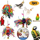 bluesees Bird Chewing Toys, Parrot Shredder Toys 3pcs Play Set for Birds, Shred Foraging Hanging Colorful Swing Toy, Ladder Swing for Small Parrots, Macaws, Parakeets, Conures, Cockatiels, Love Birds