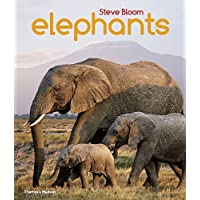 Elephants by Steve Bloom (2015-08-17)