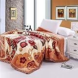 BDUK La coperta sotto di peluche di nozze coltre spessa invernale doppia copertura coperte