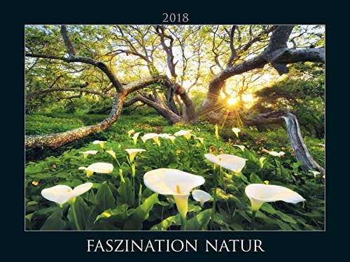 Faszination Natur 2018 - Fascinating Nature - Bildkalender quer (56 x 42) - Landschaftskalender