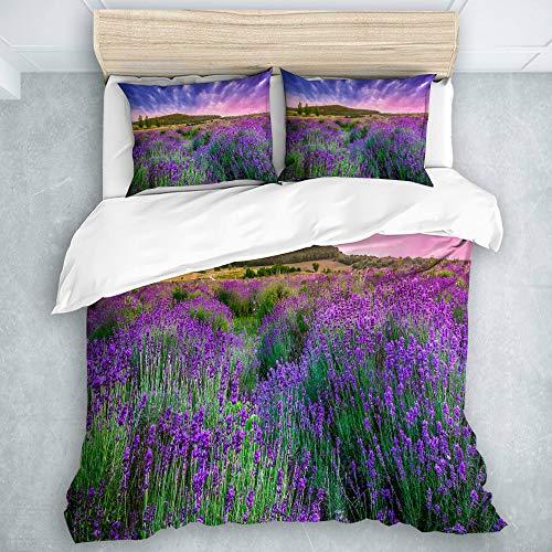 QINCO Bettwäsche-Set, Mikrofaser,Feld lila Provence Sonnenuntergang über Sommer Lavendel Tihany Natur grün Frankreich Ungarn Ernte,1 Bettbezug 240x260 + 2 Kopfkissenbezug 50x80,Super King -