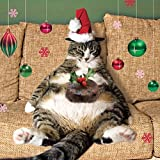 Fat Cat & Christmas Pudding Charity Xmas Cards Pack of 5