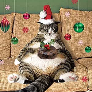 Fat Christmas Tree Cat | Cute pictures of animals ...