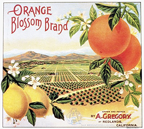 The Poster Corp Crate Label 20Th Century. /Norange Blossom Brand Oranges from California. Kunstdruck (60,96 x 91,44 cm) - Orange Crate Label