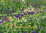 Blumenfreude Schweizer KalendariumCH-Version (Wandkalender 2019 DIN A3 quer): Mit wunderschönen Blumen und Blütenbilder durch das Jahr (Geburtstagskalender, 14 Seiten ) (CALVENDO Natur)
