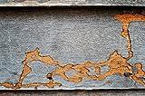 BEKATEQ BE-230 Holzschutzmittel farblos Holzschutz vor Holzschädlinge Holzwurmbekämpfung Holzwurmmittel (10L)