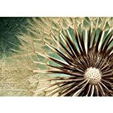 Vlies Fototapete 400x280 cm PREMIUM PLUS Wand Foto Tapete Wand Bild Vliestapete - ROMANTIC DANDELION - Blumen Pusteblume Gedicht Natur Löwenzahn Makro - no. 026