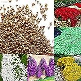 Portal Cool Gelb: 5Be6 Cad0 Bodendecker Blumengarten Pflanze Blumensamen Schöne 1Bag 100Pcs