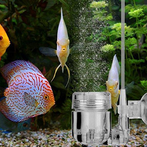 Zerone CO2Diffusor, DIY 4in 1Kohlendioxid CO2Diffusor Generator Verdampfer mit Saugnäpfen Reservoir für das System CO2-Klappdeckel Bubble Glas Aquarium Wassertank Pflanze (Verdampfer CO2-) -