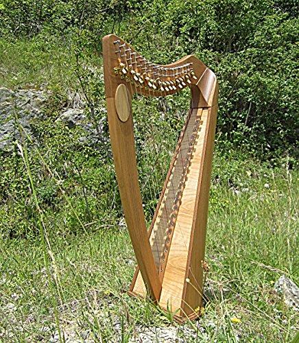 Irisch keltische Roundback Harfe mit 19 Saiten incl Case NEU