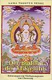 Der Buddha des Mitgefühls: Erklärungen zur Meditationspraxis von Chenrezig