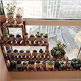 Innenboden Blumenständer Massivholz Etagenregale Leiter Pflanzenregale Wohnzimmer Balkon Fensterbank Blumenregal ( Color : A )