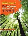 De l'énergie des arbres à l'homme - Les neufs étapes de la rencontre avec soi
