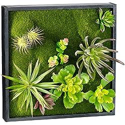 Carlo Milano Pflanzenbilder: Vertikaler Wandgarten Karl mit Deko-Pflanzen, 30 x 30 cm (Pflanzenbild ohne Bewässerung)