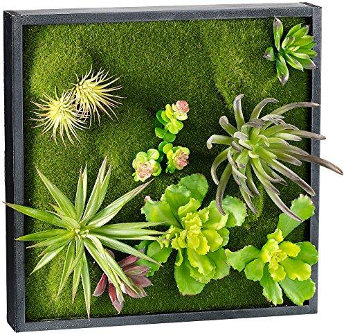 Carlo Milano Pflanzenbilder: Vertikaler Wandgarten Karl mit Deko-Pflanzen, 30 x 30 cm (Pflanzenbilder ohne Bewässerung)